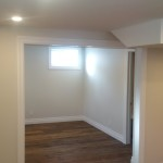 Image / Basement Renovation / Broadview Project / Barn Door Expansion